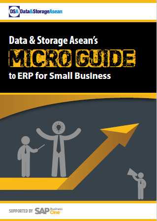 DSA Micro Guide to ERP for Small Businesses.pdf