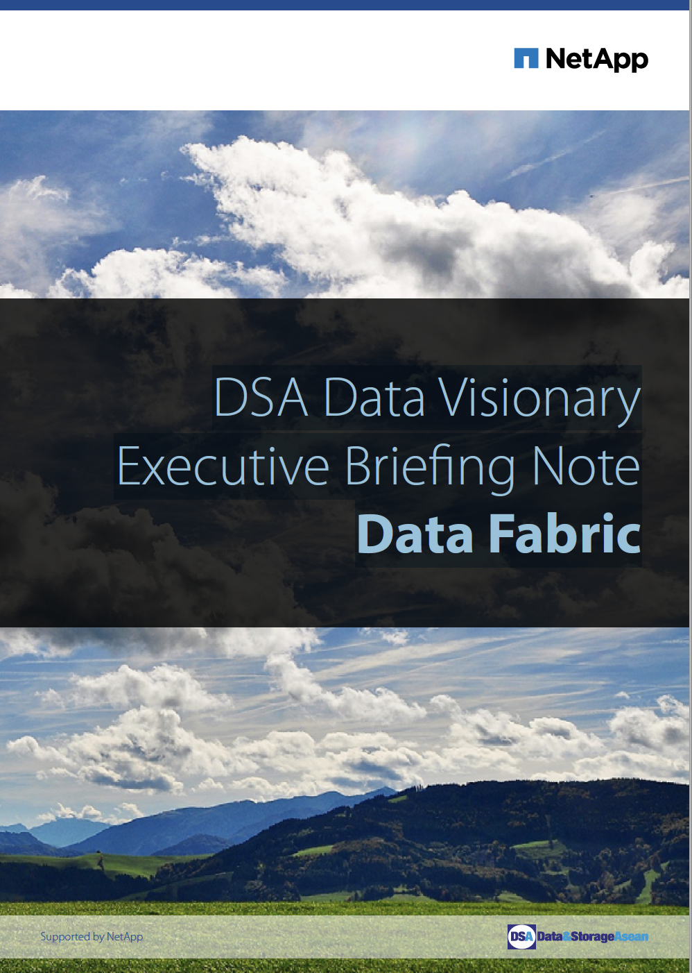 DSA Data Visionary Executive Briefing Note Data Fabric.pdf