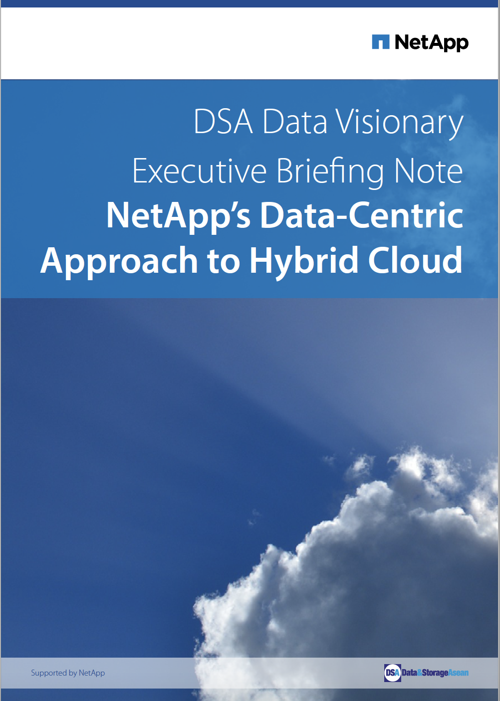 DSA Data Visionary Executive Briefing Note on NetApp's Data-Centric Approach To Hybrid Cloud.pdf